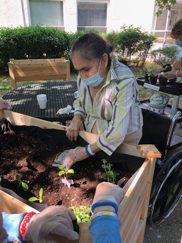 Woman tending to raised garden bed