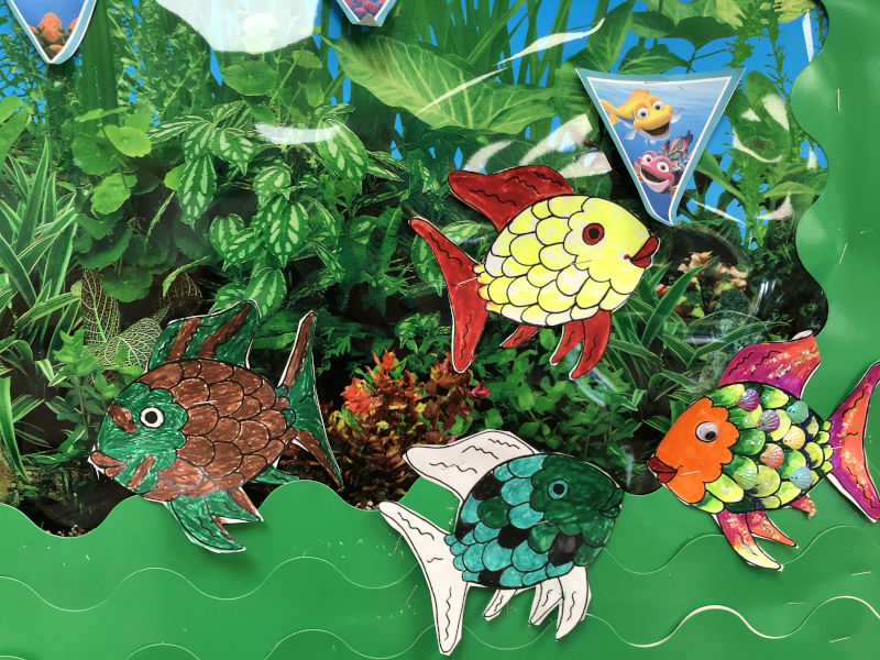 World Ocean Day bulletin board